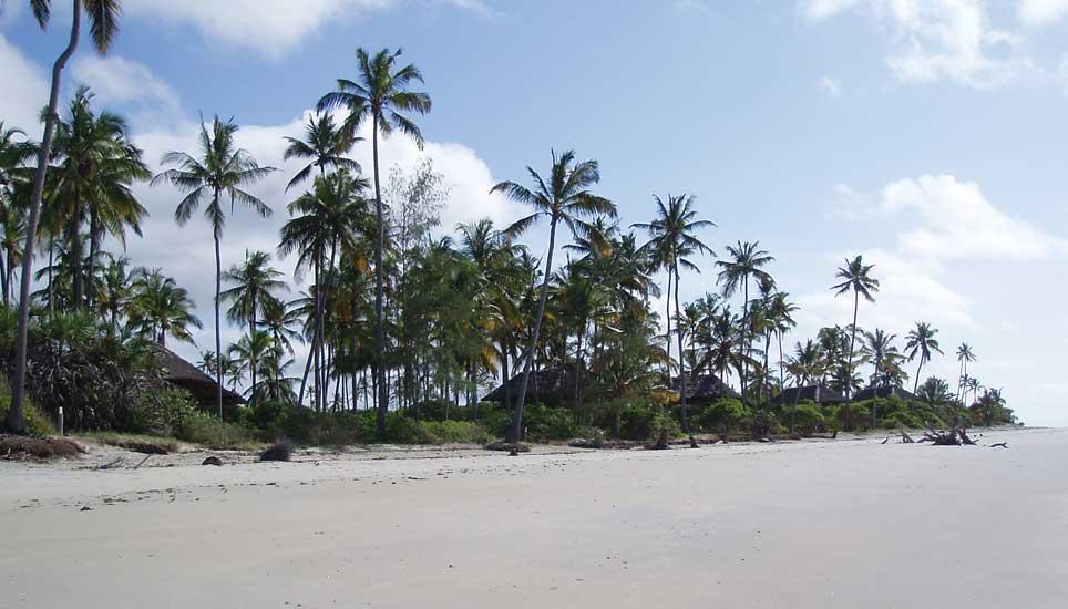 SSS-beach