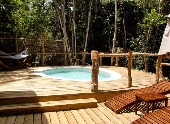 jungle suite pool