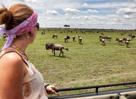 AWS-serengeti-plains