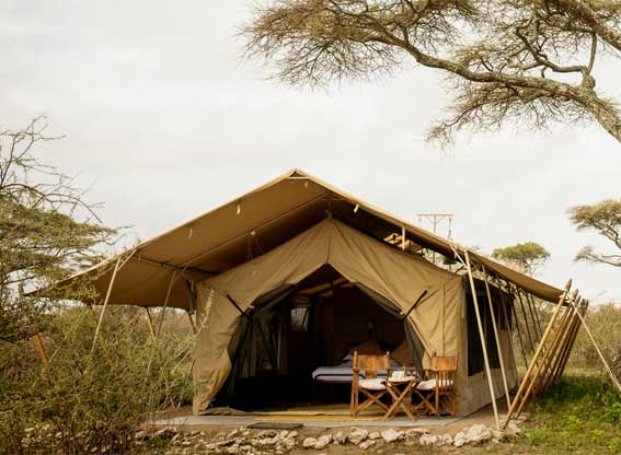 Serengeti-safari-camp