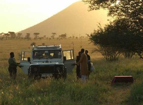 ronjo-safari