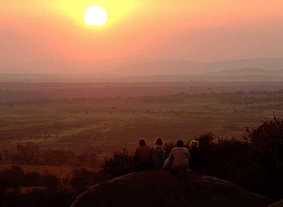Lamai-Serengeti-G4