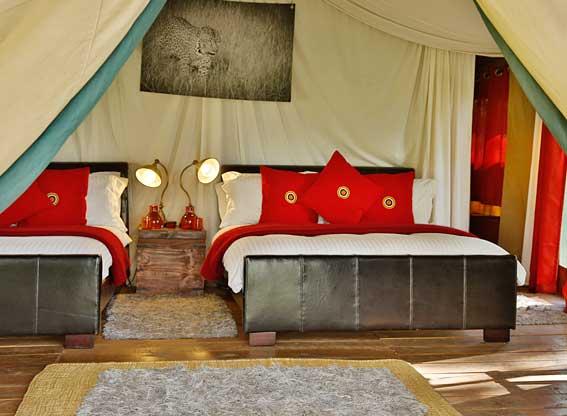 Lemala-Ngorongoro-R4