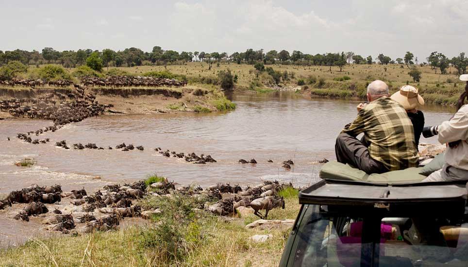 wildebeest river corssing