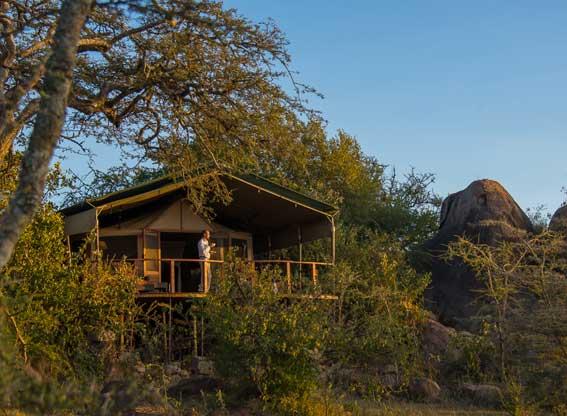 Sanctuary-Kusini-G3