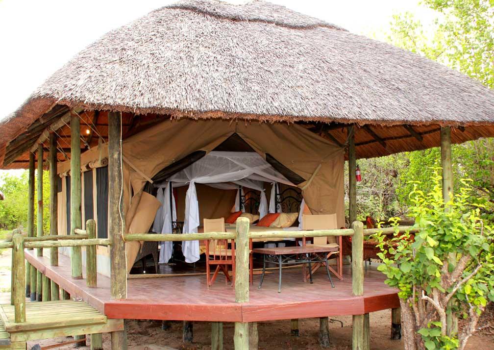 Twin safari tent