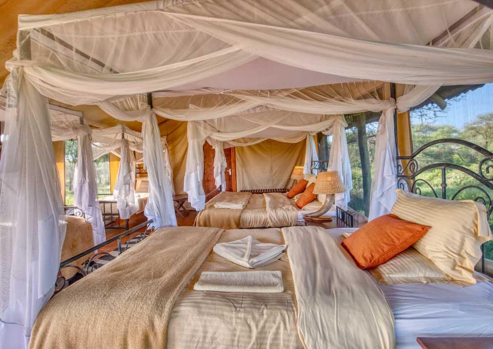 Family safari tent bedroom