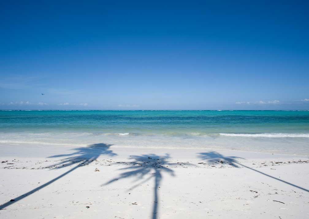 Baraza palm-flanked beach