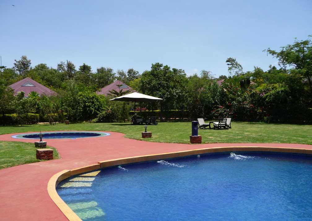 Bougainvillea-G19-7