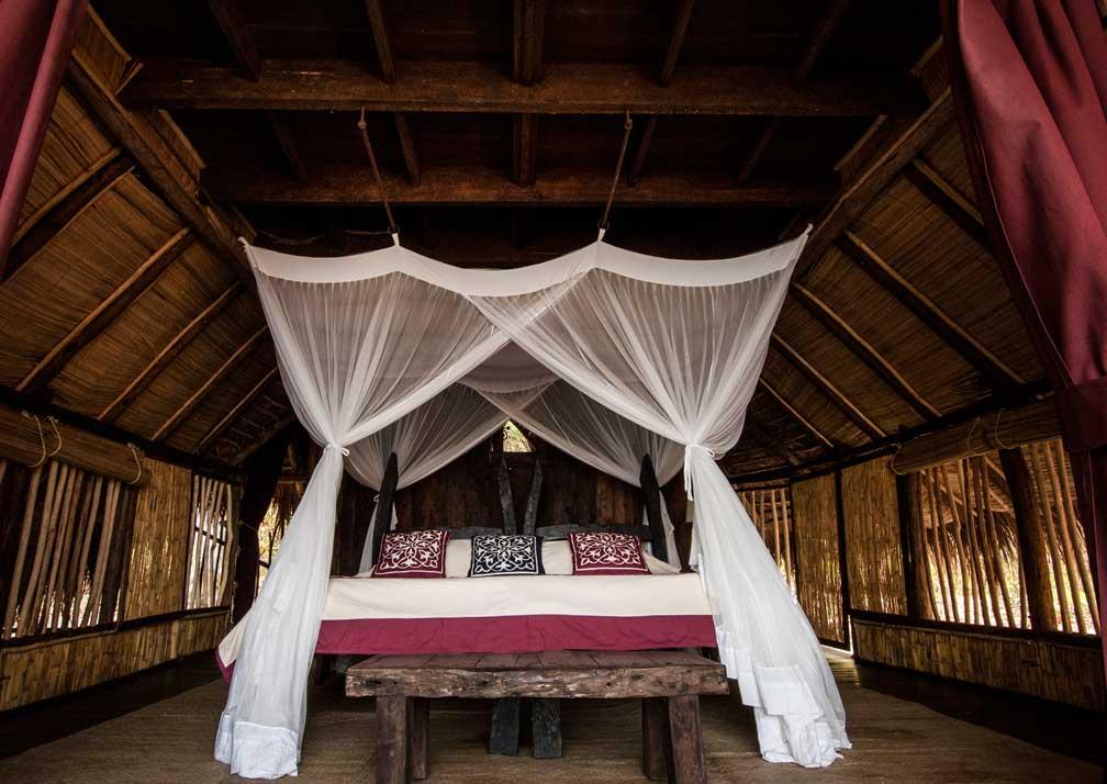 greystoke bed